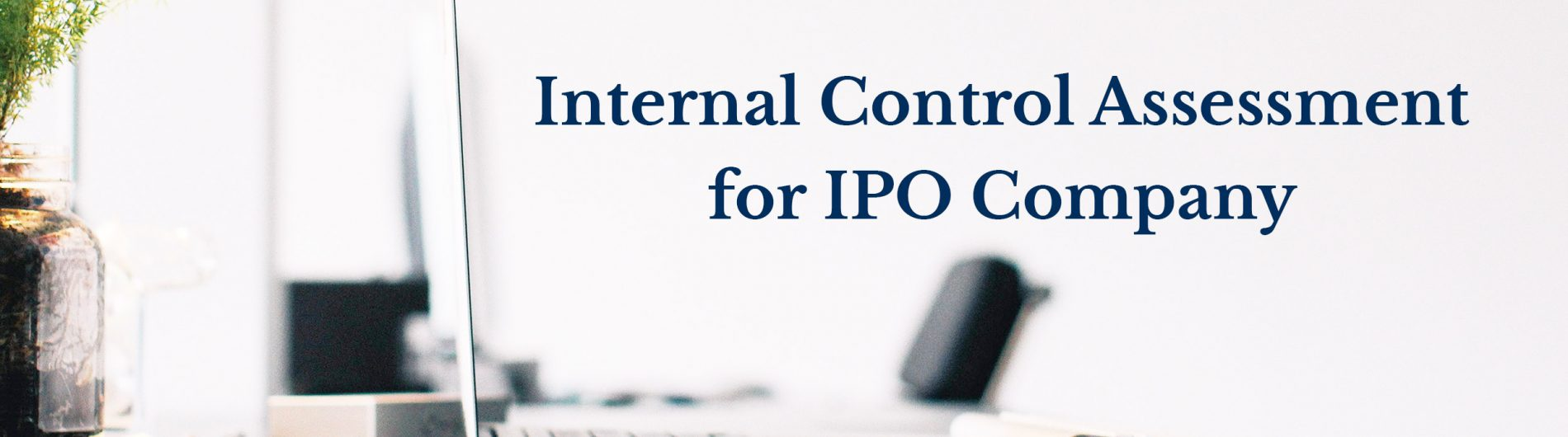 2 Internal Control Assessment